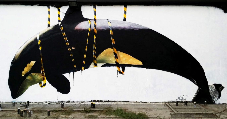 Killed Whale - San Donato (Milan), 2017